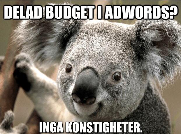 Adwords delad budget